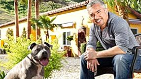 'Dog Whisperer' Cesar Millan in onderzoek na klacht over dierenmishandeling [Video]
